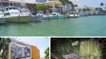 Miami Supersaver Combo: City Tour, Biscayne Bay Cruise, Everglades Airboat and Wildlife Show with ...
