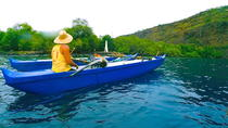 Guided Outrigger Canoe Tour in Kealakekua Bay, Big Island of Hawaii, Dolphin & Whale Watching