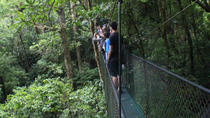 Hanging Bridges Tour at 100% AventuraPark, Monteverde, Nature & Wildlife