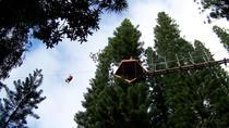 Zipline Treetop Tour, Kauai, Ziplines