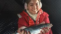 Fairbanks Ice Fishing Expedition in a Heated Cabin, Fairbanks, Fishing Charters & Tours