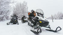 Guided Fairbanks Snowmobile Tour, Fairbanks