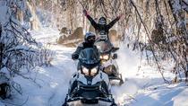 Guided Fairbanks Snowmobile Tour, Fairbanks, Ski & Snow