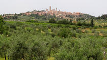 Siena and San Gimignano Day Trip with Wine Tasting, Florence, Private Day Trips