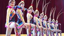 Fengjing Water Town Private Day Trip and VIP Shanghai Acrobatic Show, Shanghai, Gondola Cruises