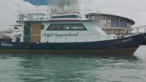 Charter Fishing boat from Chalong Phuket, Phuket, 4WD, ATV & Off-Road Tours