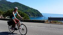 Shrines and Wineyards Cycling Tour in the Cinque Terre, Cinque Terre, Bike & Mountain Bike Tours
