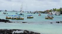 4-Day Galapagos Islands Flash Tour, Galapagos Islands, Multi-day Tours
