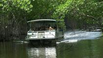 Black River Safari and YS Falls Tour from Montego Bay, Montego Bay, Full-day Tours