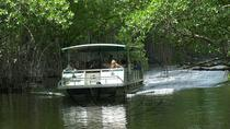Black River Safari And YS Falls tours from Montego Bay, Montego Bay, Full-day Tours
