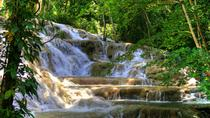 Day Trip to Dunn's River Falls from Montego Bay, Montego Bay, Half-day Tours
