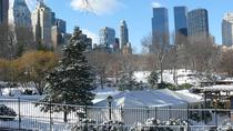 Christmas in New York Private Walking Tour, New York City, Private Sightseeing Tours
