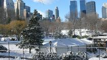 Christmas in New York - Private Walking Tour with Local Guide, New York City, Private Sightseeing ...