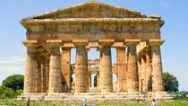 Guided Visit to the Greek Temples in Paestum and Bufala Mozzarella's Bio Farm in Paestum, Salerno