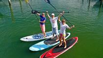1 Stunde Virginia Beach Paddleboard Lektion, Virginia Beach, Stand Up Paddleboarding