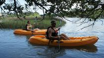 Virginia Beach 1 Hour Single Kayak Rentals, Virginia Beach, Kayaking & Canoeing