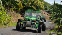 Drive and Fly - Buggy and Zipline, St Lucia, Day Trips