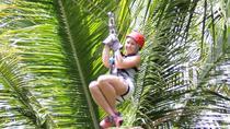 Treetop Adventure Park Canopy Tour, St Lucia, Ziplines