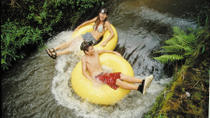 Kauai Backcountry Tubing Adventure, Kauai, White Water Rafting & Float Trips