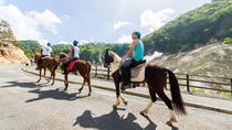 2.5-hour Horseback Ride and Volcano Tour in St. Lucia, St Lucia, Horseback Riding