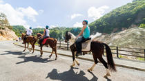 Horseback Volcano Ride in St. Lucia, St Lucia, Day Cruises