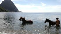 Piton Beach Ride, St Lucia, 4WD, ATV & Off-Road Tours