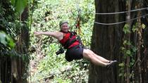 Piton Zipline Tour in St Lucia, St Lucia, null