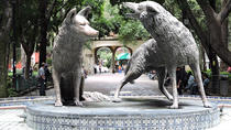 Coyoacan Audioguided Tour, Mexico City, Cultural Tours