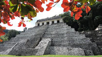 Palenque Archaeological Site and Villahermosa Full Day Tour, Palenque, Archaeology Tours