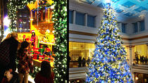 Holiday Lights & Sights, Chicago, City Tours