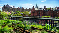 New York Meatpacking District Chelsea Market and The Highline Walking Tour, New York City, Walking ...
