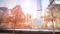 Small Group Downtown New York and 911 Memorial Tour with Pedestal Access to Statue of Liberty, New ...