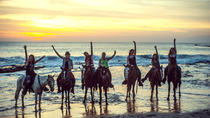 Acapulco Horseback Riding Tour and Baby Turtle Release, Acapulco
