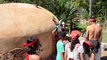 Baby Turtle Release Aztec Religious Mysticism Temazcal Experience and Jungle Coyuca Lagoon Tour, ...