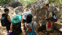 Palma Sola Petroglyphs Archaeological Zone and Municipal Market Tour, Acapulco, Archaeology Tours