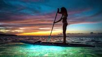 LED Paddleboard Sunset Glow Tour, Miami, Flyboarding