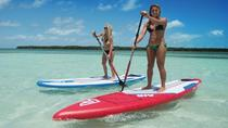 Paddleboard Rental with Instruction from Miami Beach Paddleboard, Miami, Stand Up Paddleboarding
