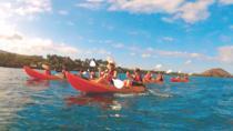 Makena Turtle Town Eco Adventure, Maui, Kayaking & Canoeing