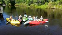 Self-Guided Kayak Tour of Amelia Island, Jacksonville, Kayaking & Canoeing