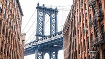 Best of Brooklyn Half-Day Food and Culture Tour, New York City, Hop-on Hop-off Tours