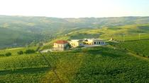 Bucharest Private Wine Tasting Tour of Dealu Mare's Old Wine Road and Famous Wineries, Bucharest,...