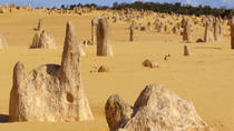 Pinnacles Desert, Koala e Sandboarding Tour 4WD Day da Perth, Perth, 4WD, ATV & Off-Road Tours