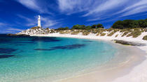Rottnest Island Grand Tour Including Lunch and Historical Train Ride, Rottnest Island, Day Trips