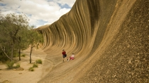 Wave Rock, York, Wildblumen und Aboriginal-Kultur, Tour von Perth, Perth
