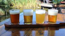 Full-Day Out Back Craft Beer Tour from Cape Town, Cape Town, Beer & Brewery Tours
