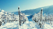 Winter Wine Tour, Niagara Falls & Around, Wine Tasting & Winery Tours