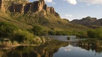 Salt River Kayak Adventure from Scottsdale
