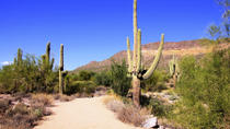 U-Drive Desert Car Tour in the Sonoran Desert, Phoenix, 4WD, ATV & Off-Road Tours