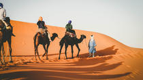 Sunset Camel Ride in the Merzouga Dunes, Morocco Sahara, Nature & Wildlife