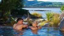 Shore Excursion: Rotorua's Polynesian Spa Heaven from Tauranga, Tauranga